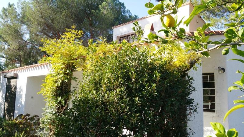 Sale house / villa Porticcio 640000€ - Picture 3