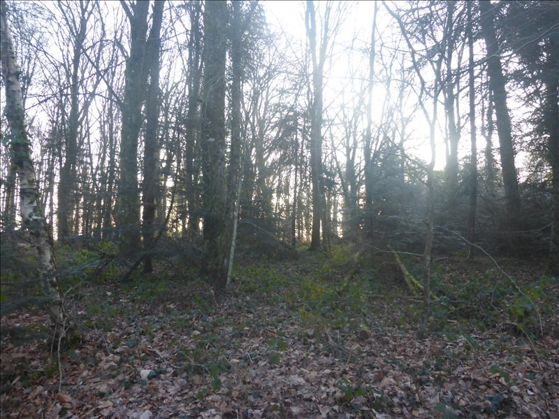 Vente terrain Blain 38200€ - Photo 1