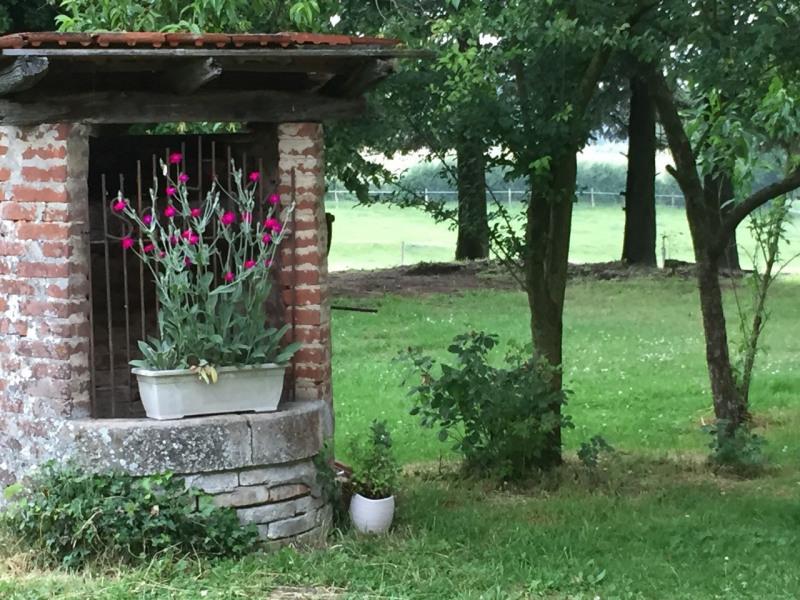 Sale house / villa Romenay 399000€ - Picture 3