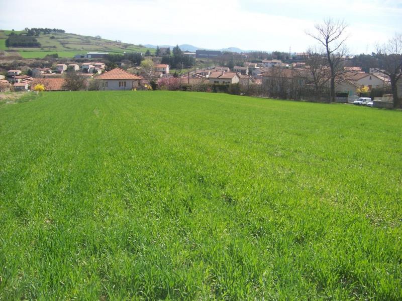 Vente terrain Le puy en velay 54000€ - Photo 3