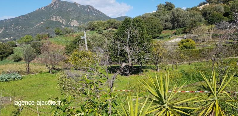 Vente terrain Bastelicaccia 160000€ - Photo 6