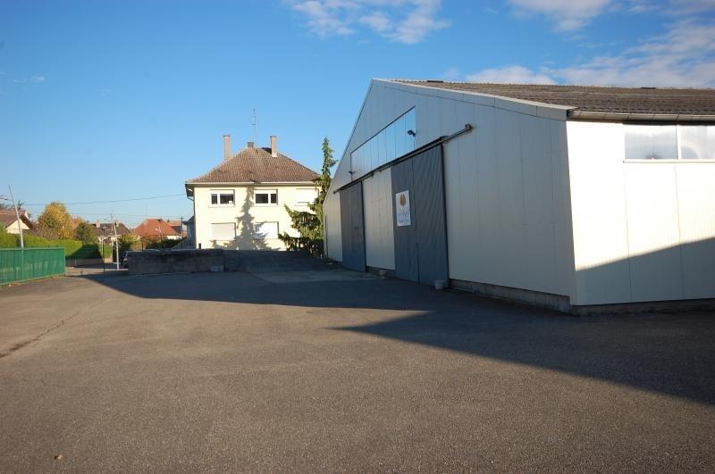 Rental empty room/storage Fegersheim 3350€ HT/HC - Picture 3