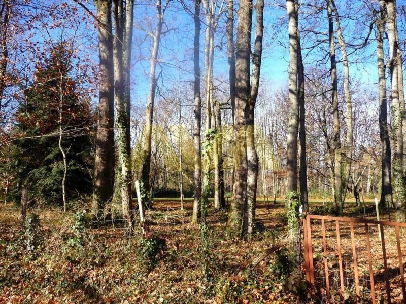 Venta  terreno Mauléon-licharre 55000€ - Fotografía 5