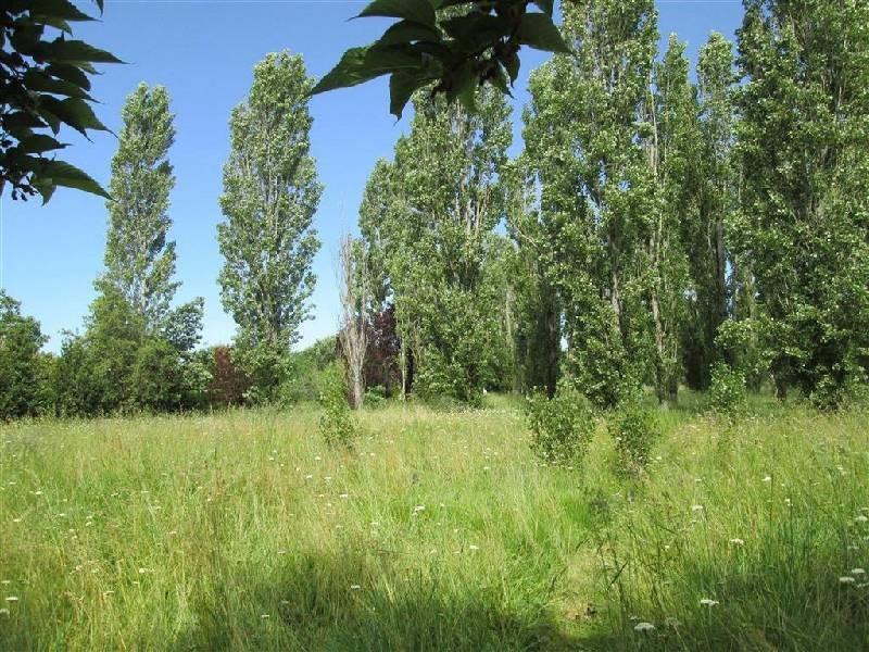 Vente terrain Lavaur 100000€ - Photo 2