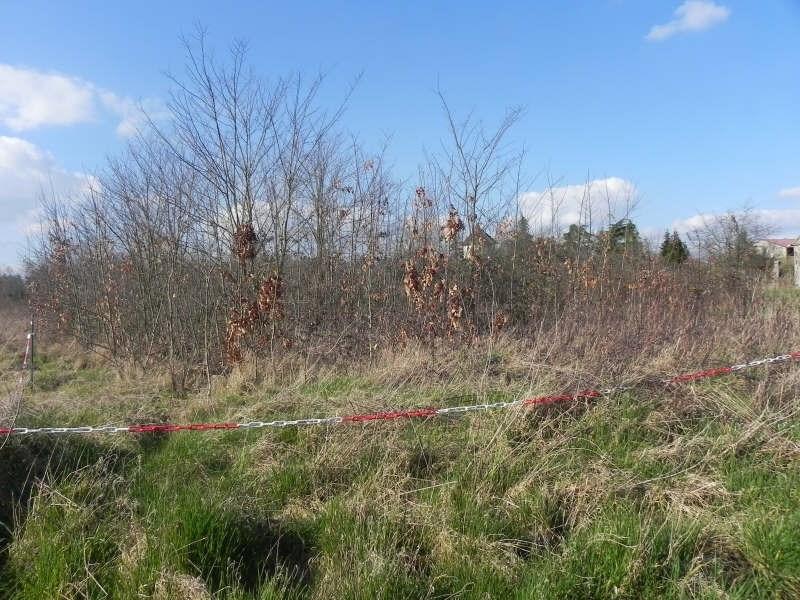 Vente terrain Ligny le chatel lordonnois 47000€ - Photo 1