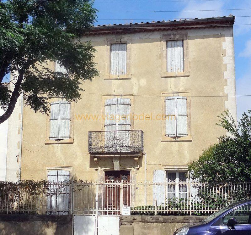 Viager maison / villa Saint-laurent-de-la-cabrerisse 130000€ - Photo 2