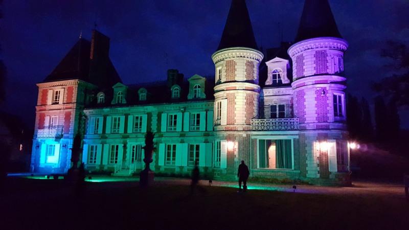 Vente de prestige château Fontenay-trésigny 2950000€ - Photo 10