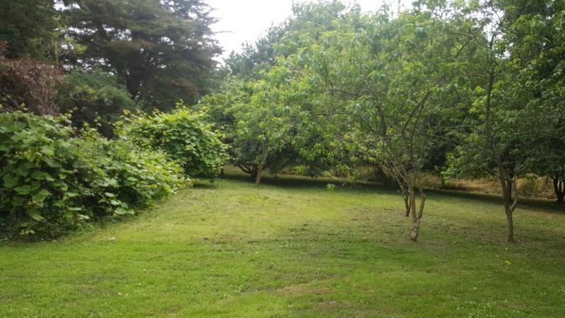 Vente maison / villa Clohars fouesnant 335500€ - Photo 5