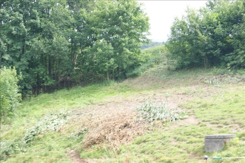 Vente terrain Mont saxonnex 96 000€ - Photo 3