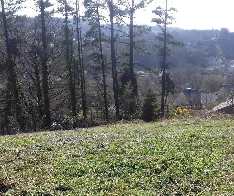 Vente terrain La roche maurice 110000€ - Photo 3