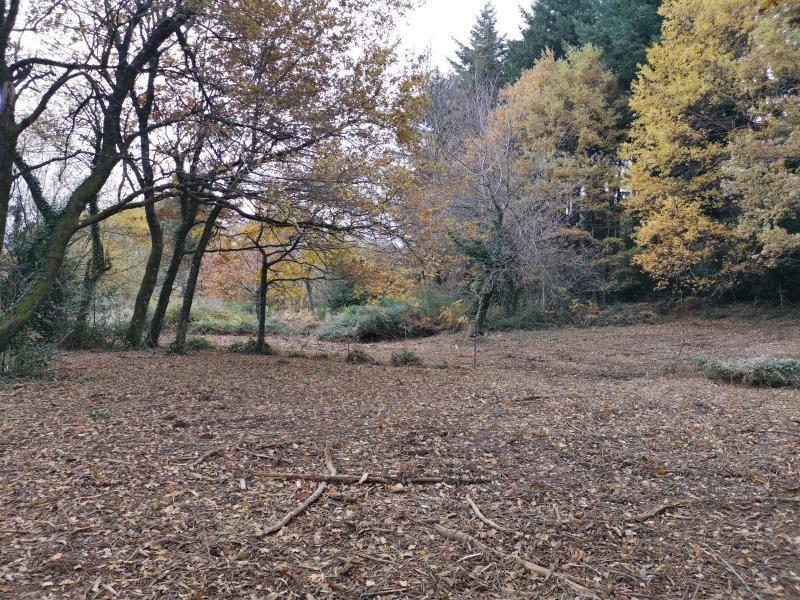 Vente terrain Bout du pont de l'arn 60000€ - Photo 3