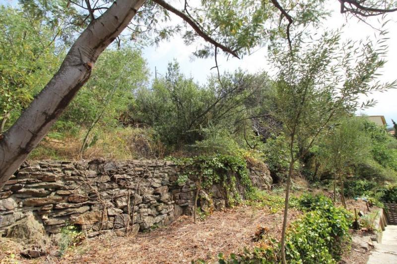 Vente terrain Collioure 220000€ - Photo 3