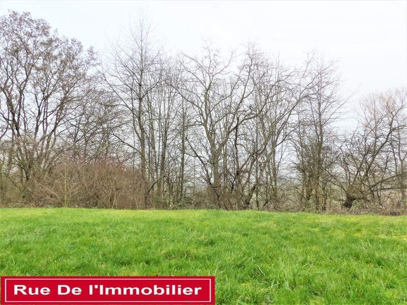 Vente maison / villa Hochfelden 369000€ - Photo 9