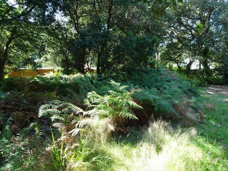 Vente terrain Labenne 247925€ - Photo 1
