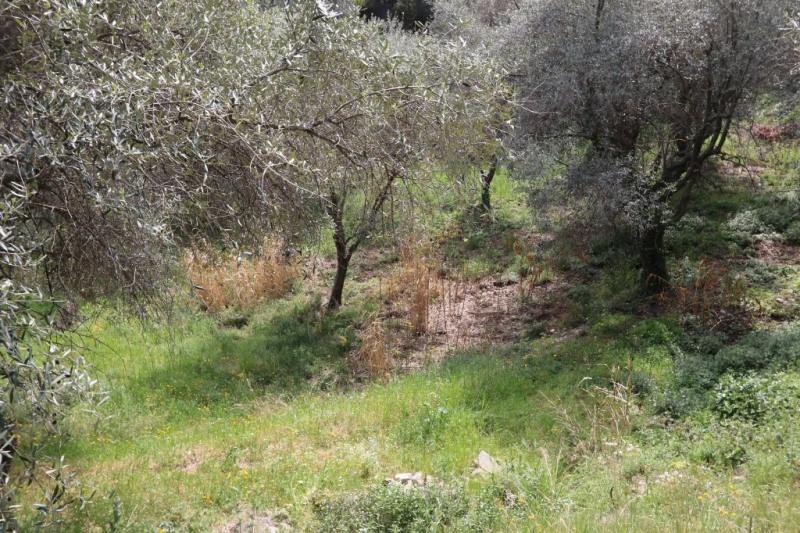 Vente terrain Nice 337000€ - Photo 8