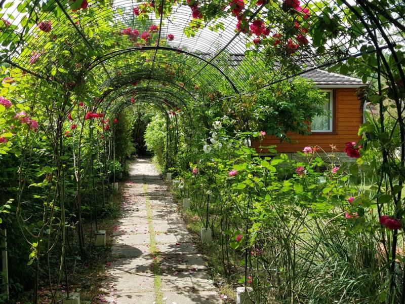 Vente maison / villa Montigny sur loing 159000€ - Photo 1