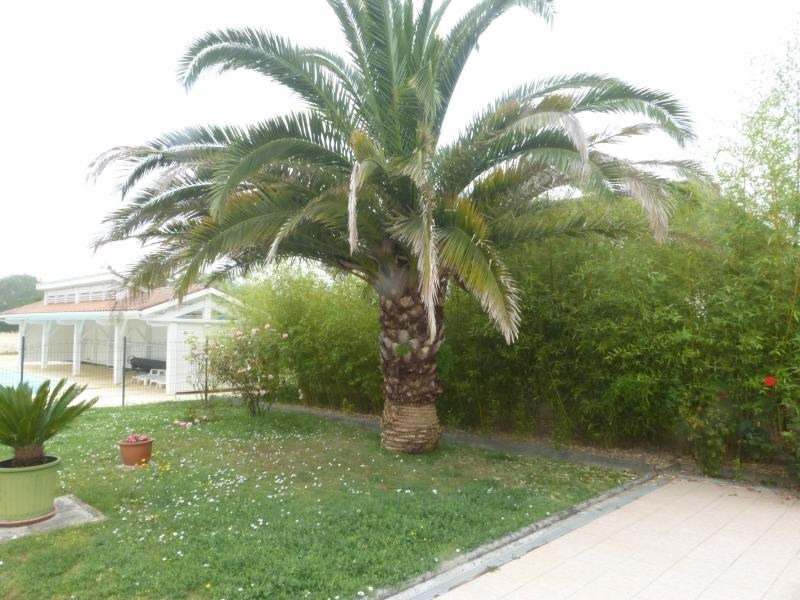 Deluxe sale house / villa Fouras 532 000€ - Picture 3