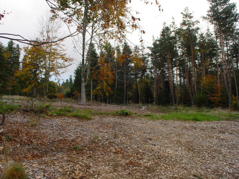Vente terrain Le chambon sur lignon 45600€ - Photo 1