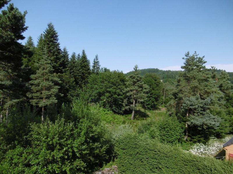 Sale house / villa Le chambon sur lignon 264550€ - Picture 21