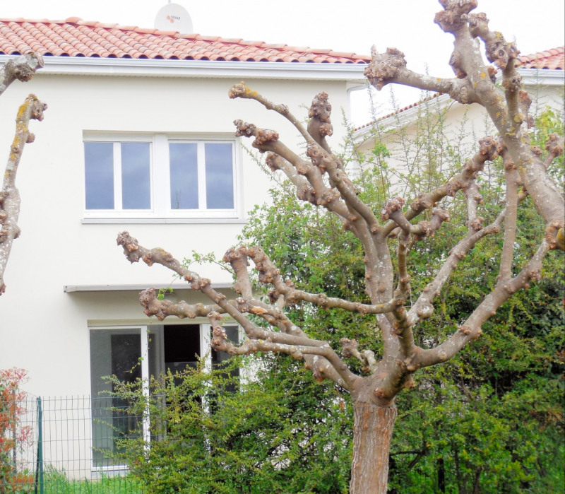 Vente appartement Aucamville 179000€ - Photo 13