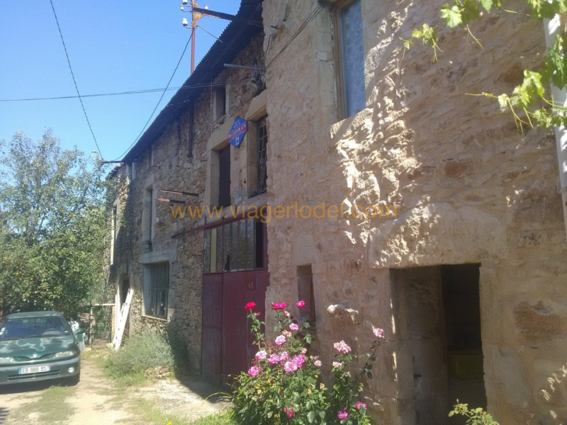 Life annuity house / villa Le riols 33 000€ - Picture 2