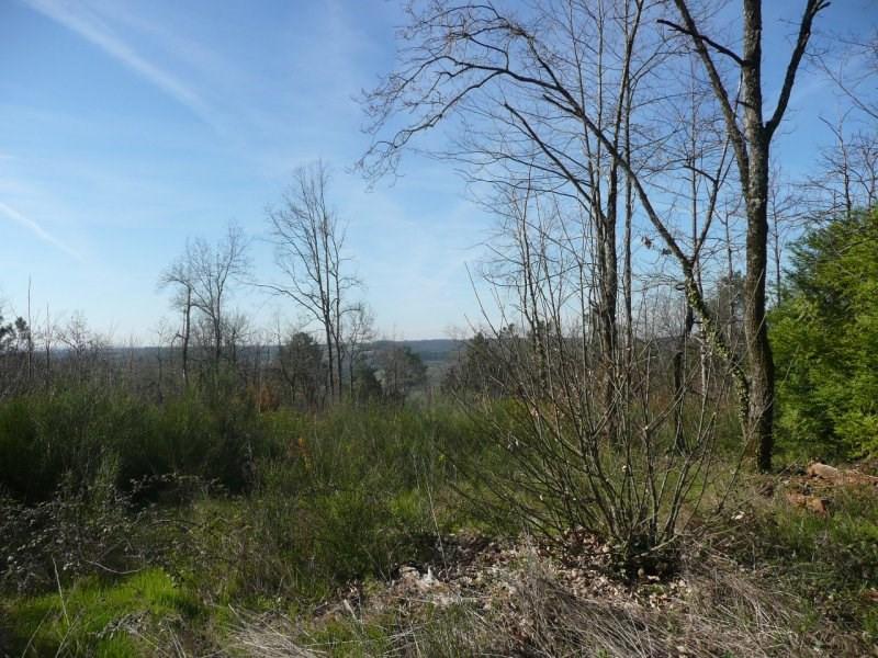 Vente terrain Auriac du perigord 30000€ - Photo 2