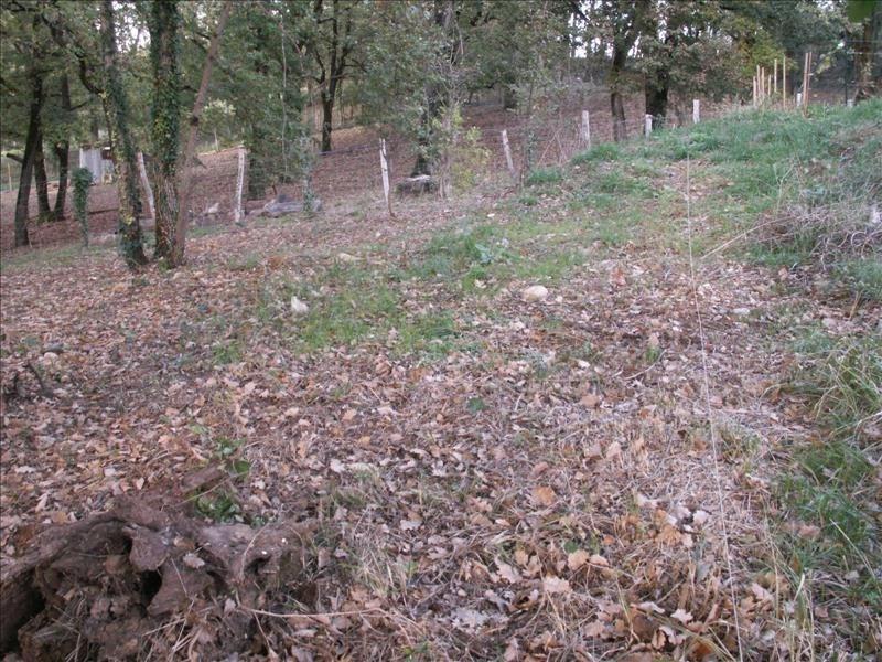 Vente terrain Cunac 74000€ - Photo 3