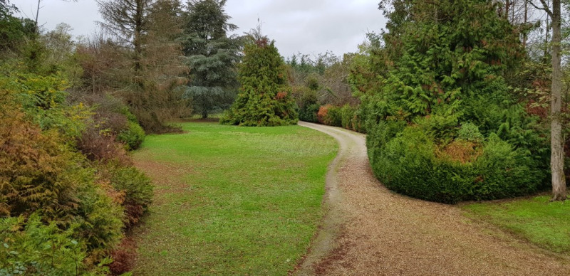 Vente maison / villa Chateauneuf sur loire 209000€ - Photo 2