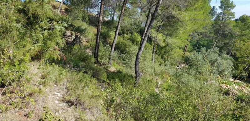 Revenda terreno Meyrargues 215000€ - Fotografia 2