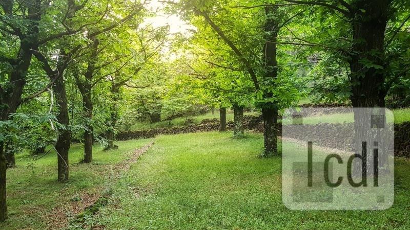 Vente terrain Thueyts 162000€ - Photo 1