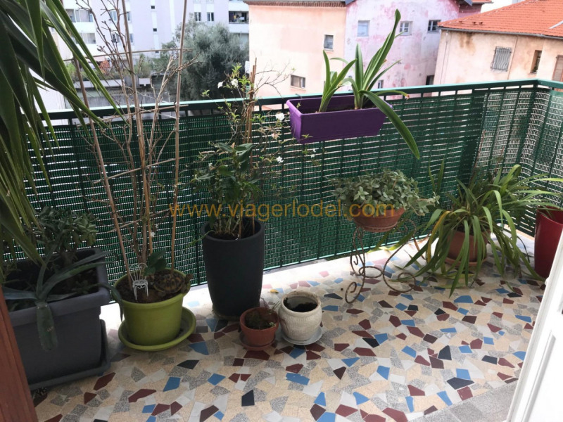 Viager appartement Nice 67 500€ - Photo 7