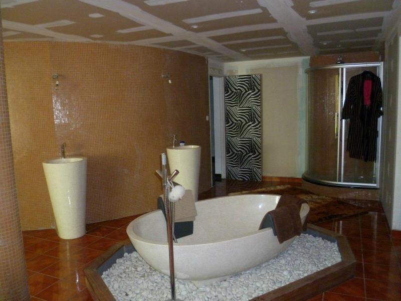 Vente loft/atelier/surface St laurent de chamousset 325000€ - Photo 8