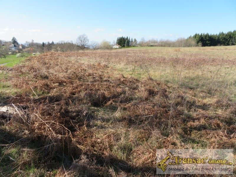 Sale site Chateldon 36 300€ - Picture 1