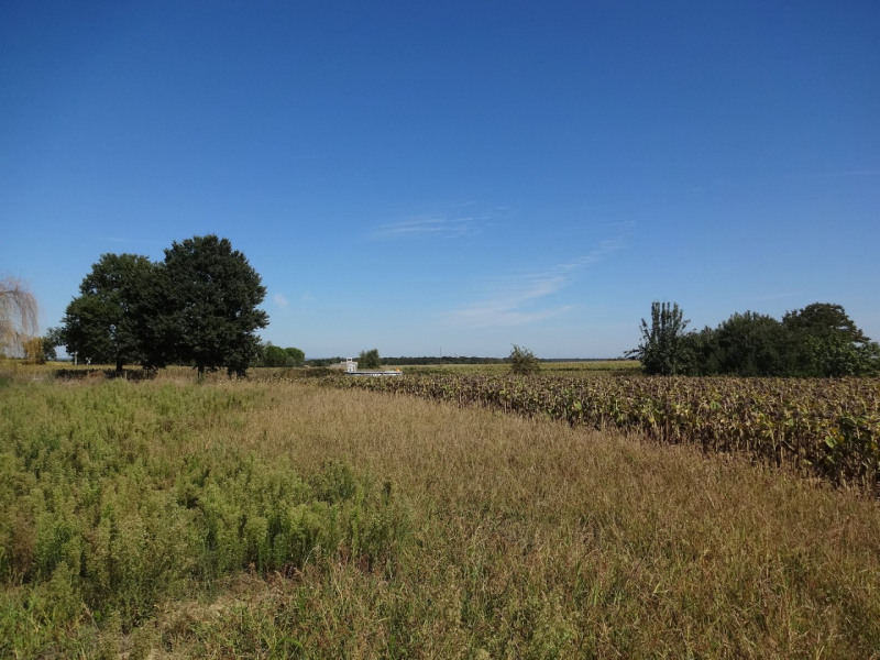 Vente terrain Larra 94950€ - Photo 2
