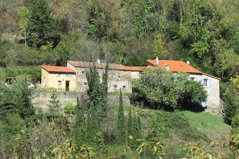 Sale house / villa Prats de mollo la preste 548000€ - Picture 1