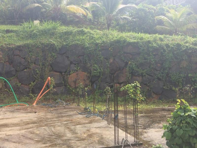 Vente terrain Les anses d'arlets 183600€ - Photo 2