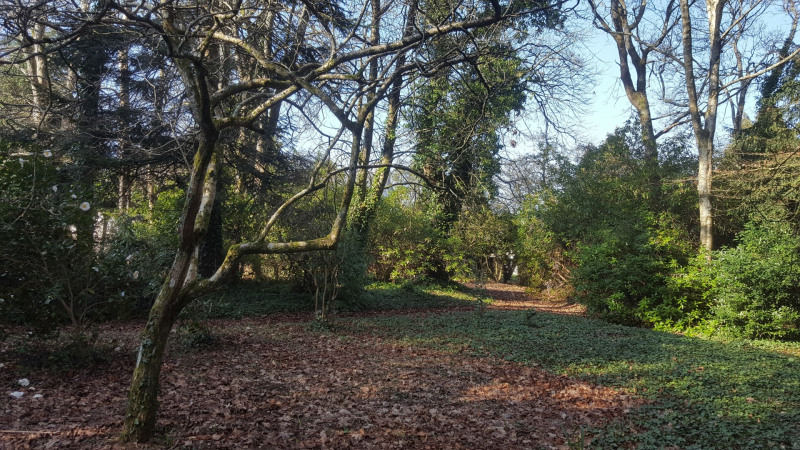 Vente maison / villa Quimper 227900€ - Photo 2