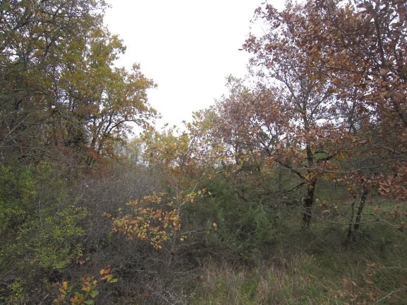 Vente terrain Marnac 85800€ - Photo 2