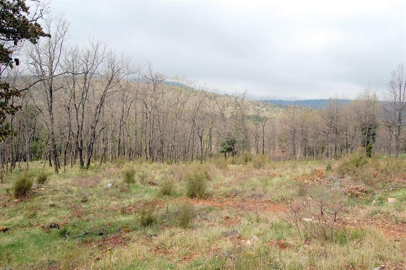 Vendita terreno Mons 160000€ - Fotografia 1