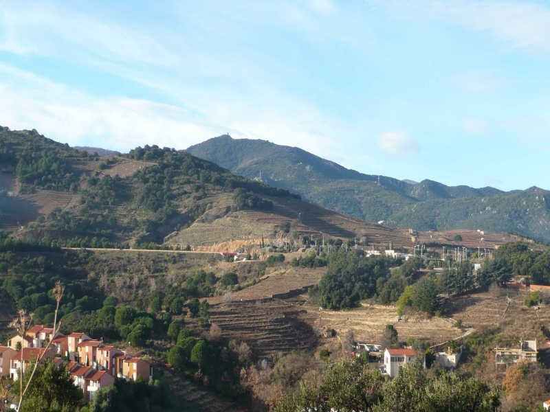 Vente terrain Collioure 199 000€ - Photo 7