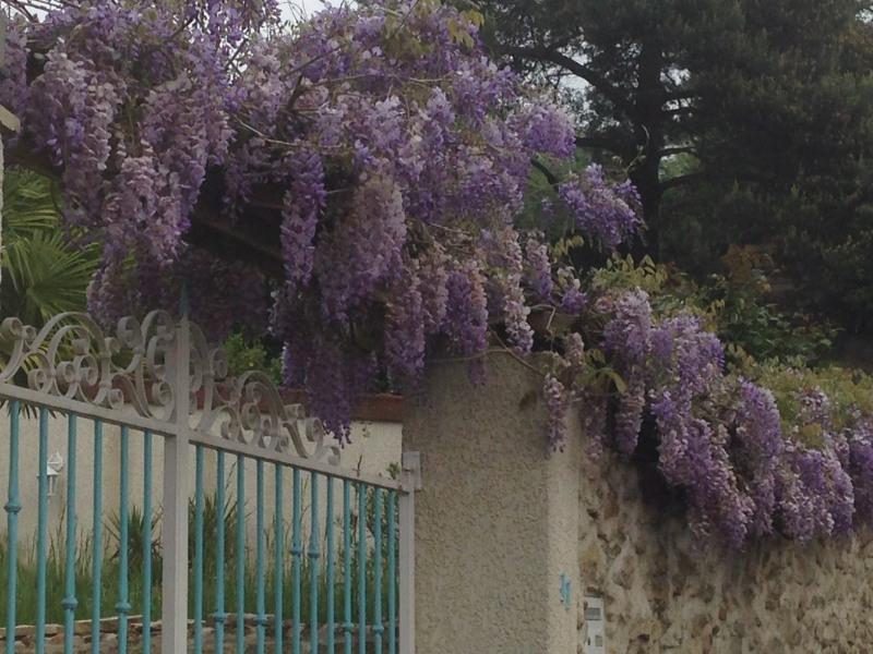 Vente maison / villa Marcoussis 440000€ - Photo 3