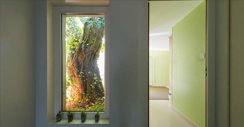 Vente de prestige maison / villa Beaune 820000€ - Photo 10