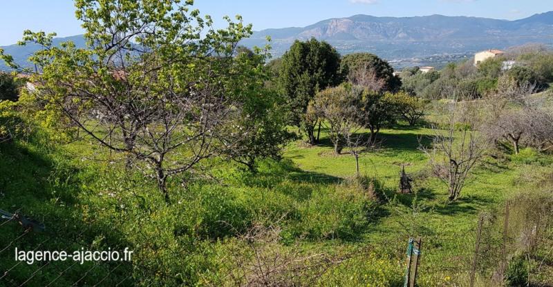 Vente terrain Bastelicaccia 160000€ - Photo 3