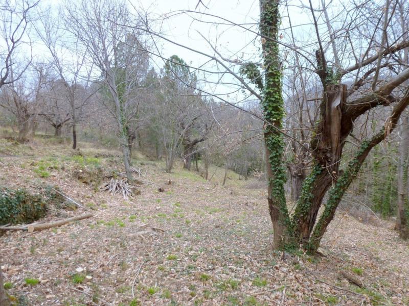 Vente terrain Aubenas 34000€ - Photo 13