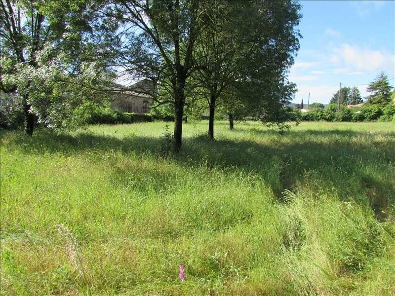 Vente terrain Bedarieux 340 000€ - Photo 3