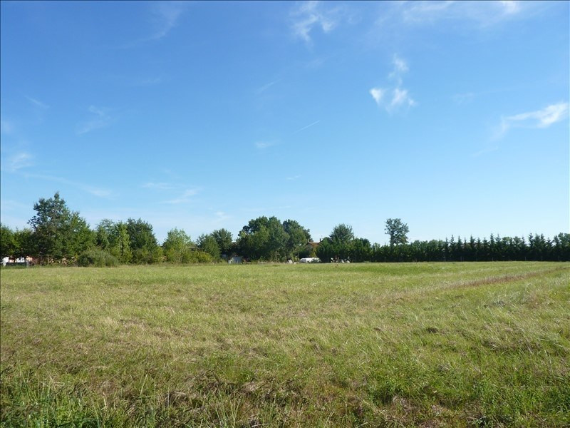Vente terrain Albias 56 000€ - Photo 2