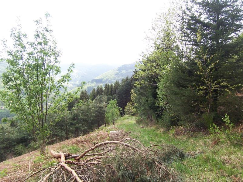 Vend Domaine forestier avec ferme dans le Pilat