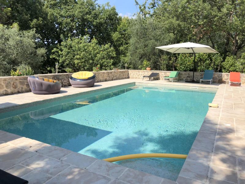 Deluxe sale house / villa Montauroux 990000€ - Picture 3