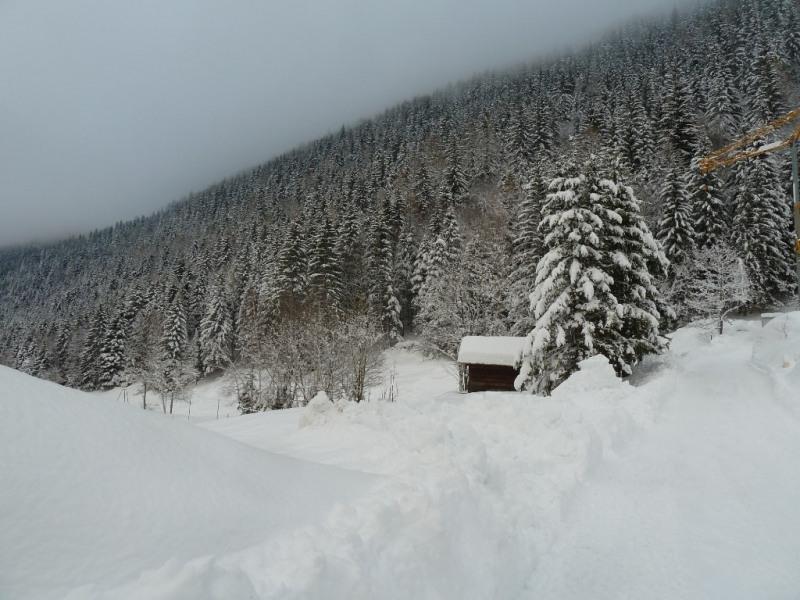 Vente de prestige maison / villa Chamonix mont blanc 1320000€ - Photo 4