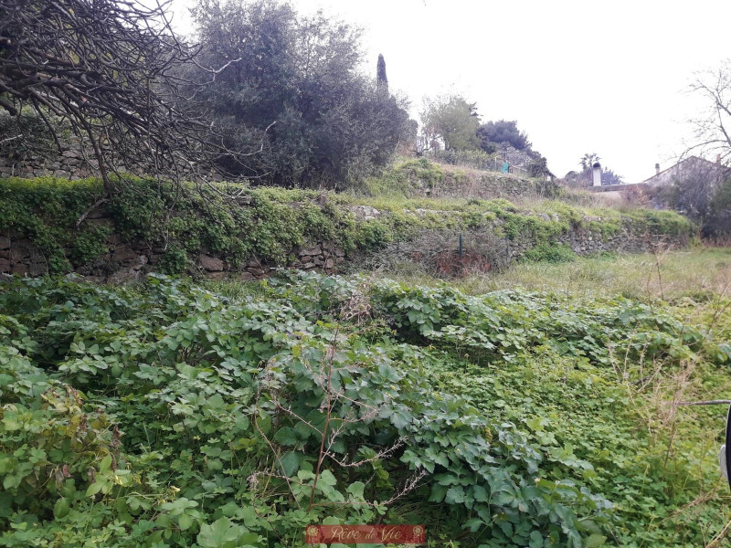 Vente terrain Bormes les mimosas 230000€ - Photo 2